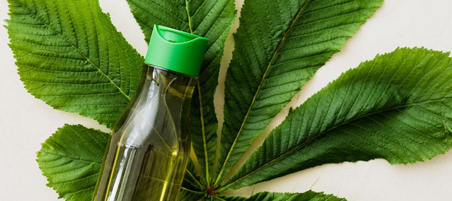 Comprar champú ecológico online